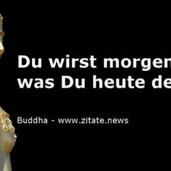 Lebensweisheit Archive Zitatenews