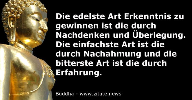 Erkenntnis Buddha