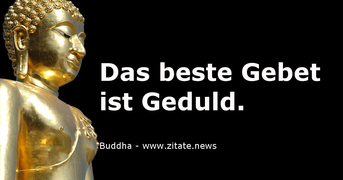 Buddha Zitate