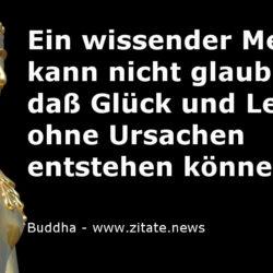 Glück Leid Buddha