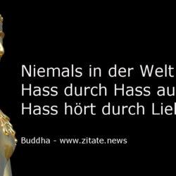 Buddha Hass Liebe