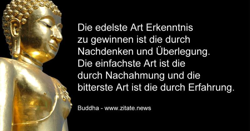 Budda Sprüche