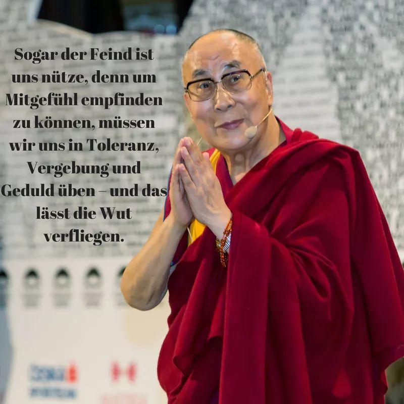 Buddha Zitate Zitate News